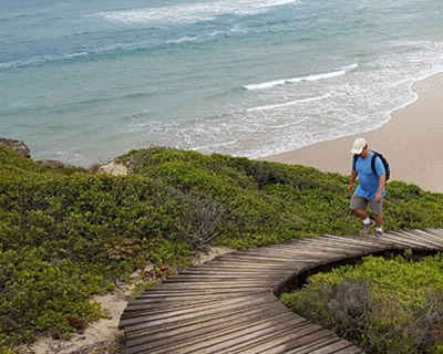 Activities in Plettenberg Bay
